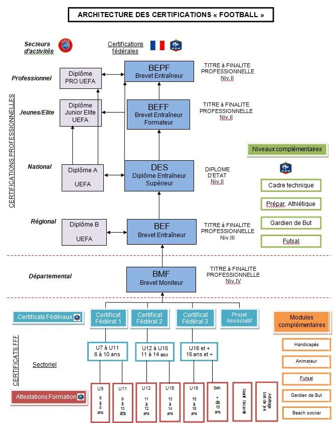 프랑스 라이센스.png
