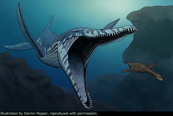 바다를 지배했던 고대 생물들 미스터리
