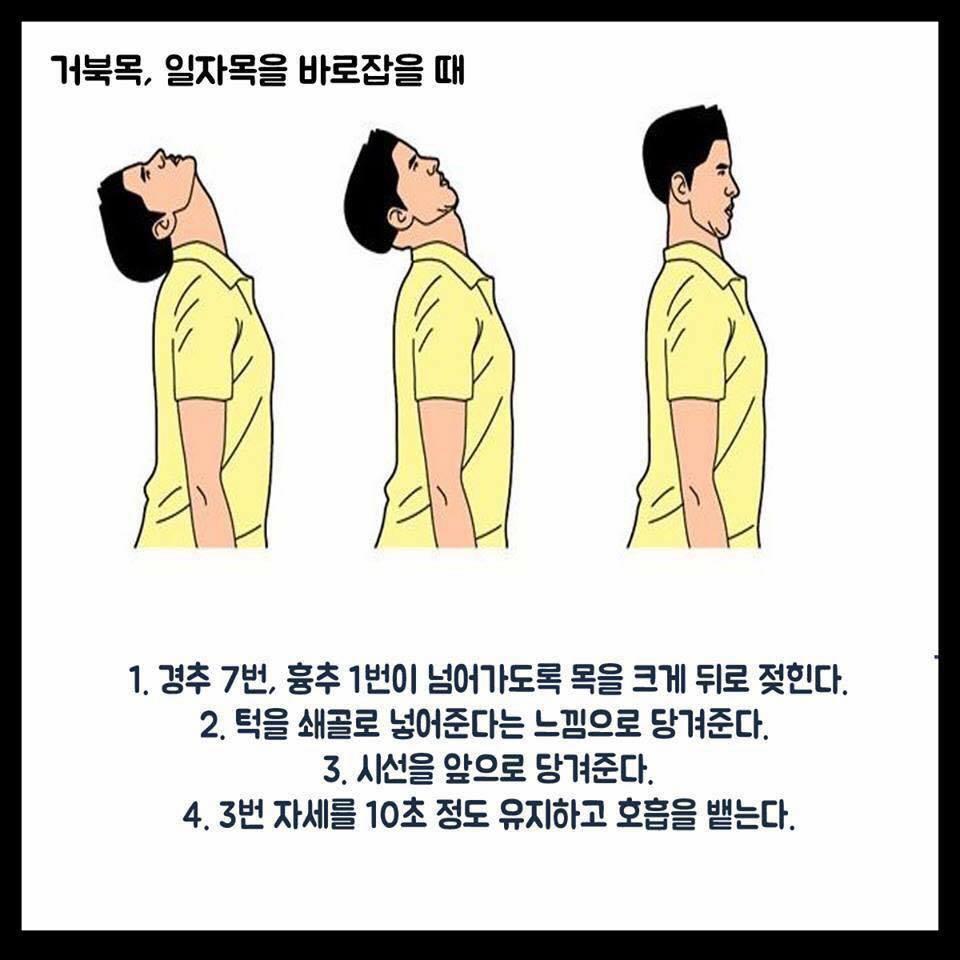 척추를 바로 잡는 스트레칭 방법