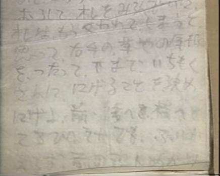 memo.png 후쿠오카 대학 청년들의 비극