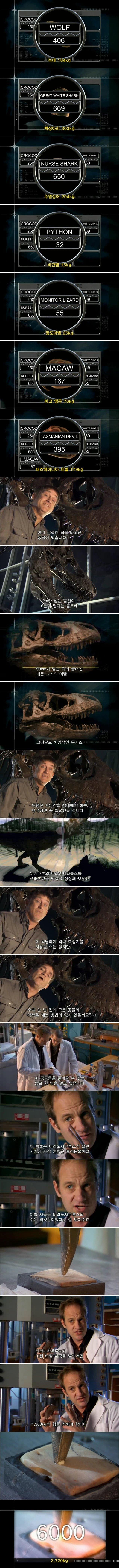1.jpg 최강의 이빨을 가진 동물.jpgif