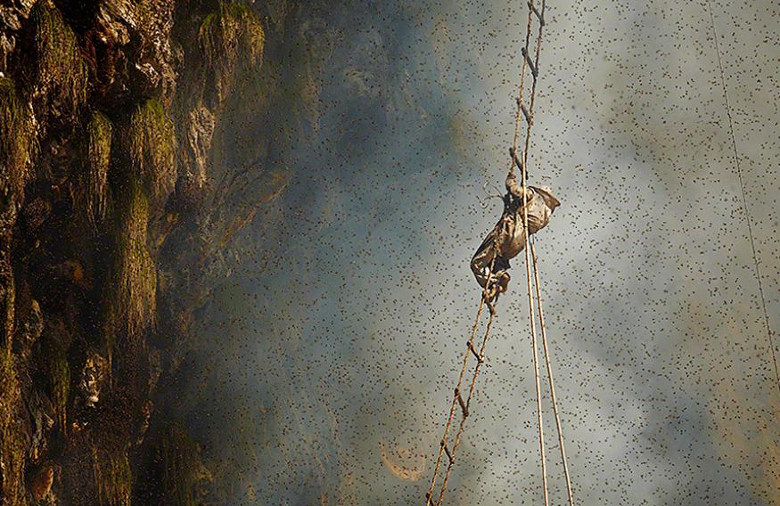 0002.png 네팔의 흔한 꿀 사냥꾼 구룽(Gurung) 부족