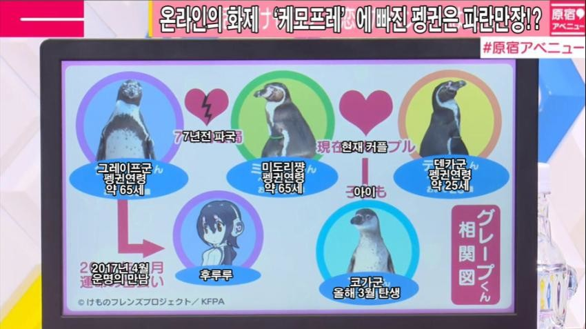 http://image.fmkorea.com/files/attach/new/20171013/486616/55598069/804520142/9890d5ad3f361fbe6e9566359be2d438.jpg