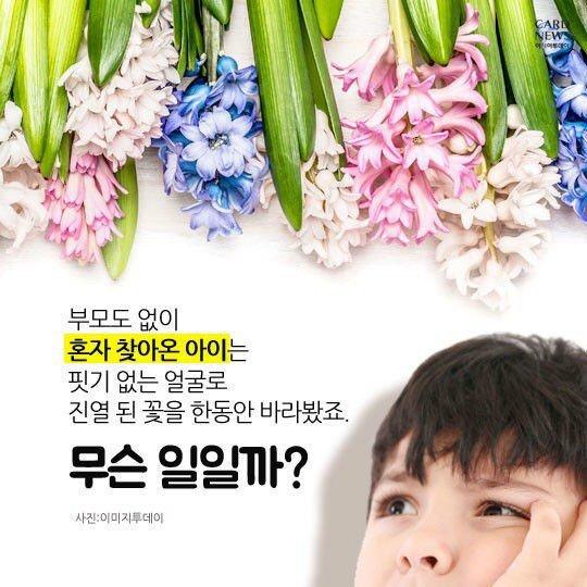 34277E54-C214-45D3-B7D8-0B5C9AFF3D0C.jpeg 60년치 꽃배달 해주세요.