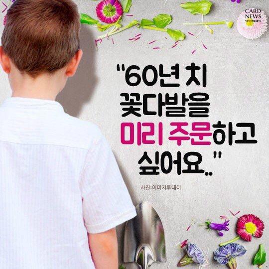 973C80DA-0302-42D7-A242-8EF83AA90999.jpeg 60년치 꽃배달 해주세요.