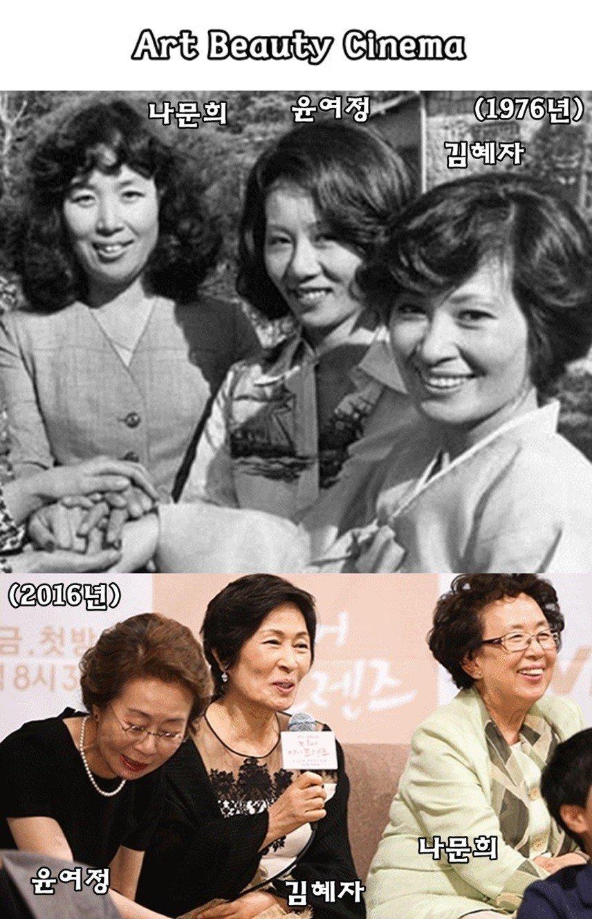 여배우들의 40년전과 지금.jpg