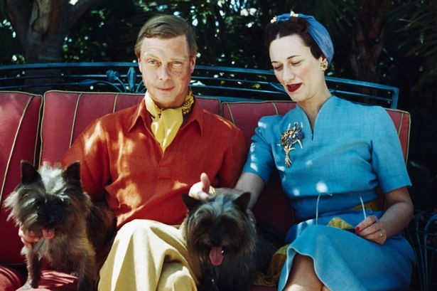 duke-and-duchess-of-windsor-with-dogs.jpg