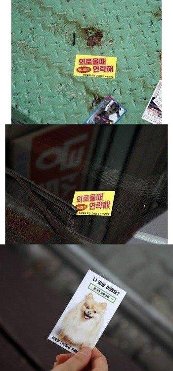 15a5753af573fc5f6.jpg 외로울때 연락해! 이쁜애들 항시대기중!