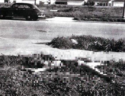 2222222222222222222.jpg (혐오) 미국에서 임팩트 존나 셌던 단일 살인 사건