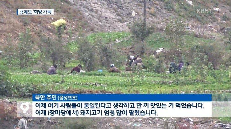 북반7.jpg 남북정상회담에 대한 북한주민들의 반응.news