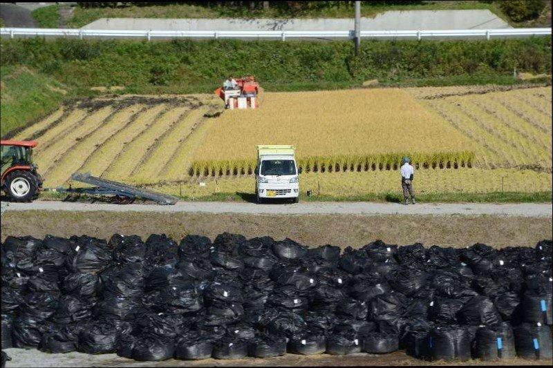 먹어서 응원하자! 1.jpg 일본 쉑덜 내로남불