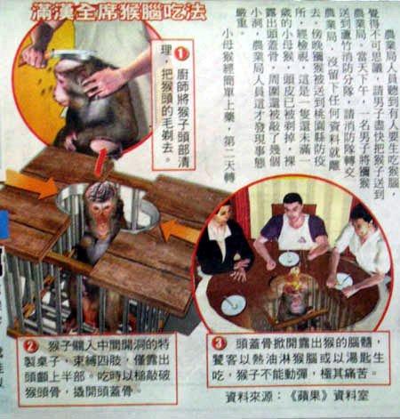 A.jpg (극혐주의) 중국의 가장 극혐스러운 음식 1위
