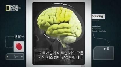 r.jpg 사정후의 뇌