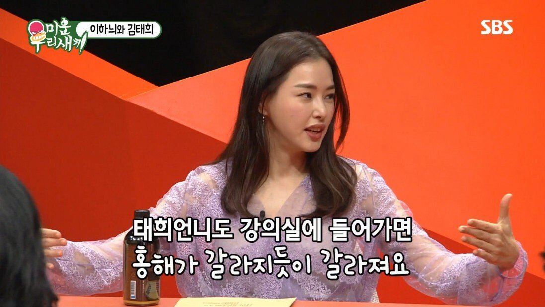 김태희의 권유로 연예계 생활을 시작했다는 이하늬