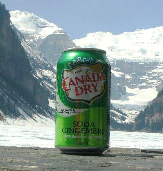캐나다에서 이거 자주 마셨는데 - 오덕양성소 - 에펨코리아