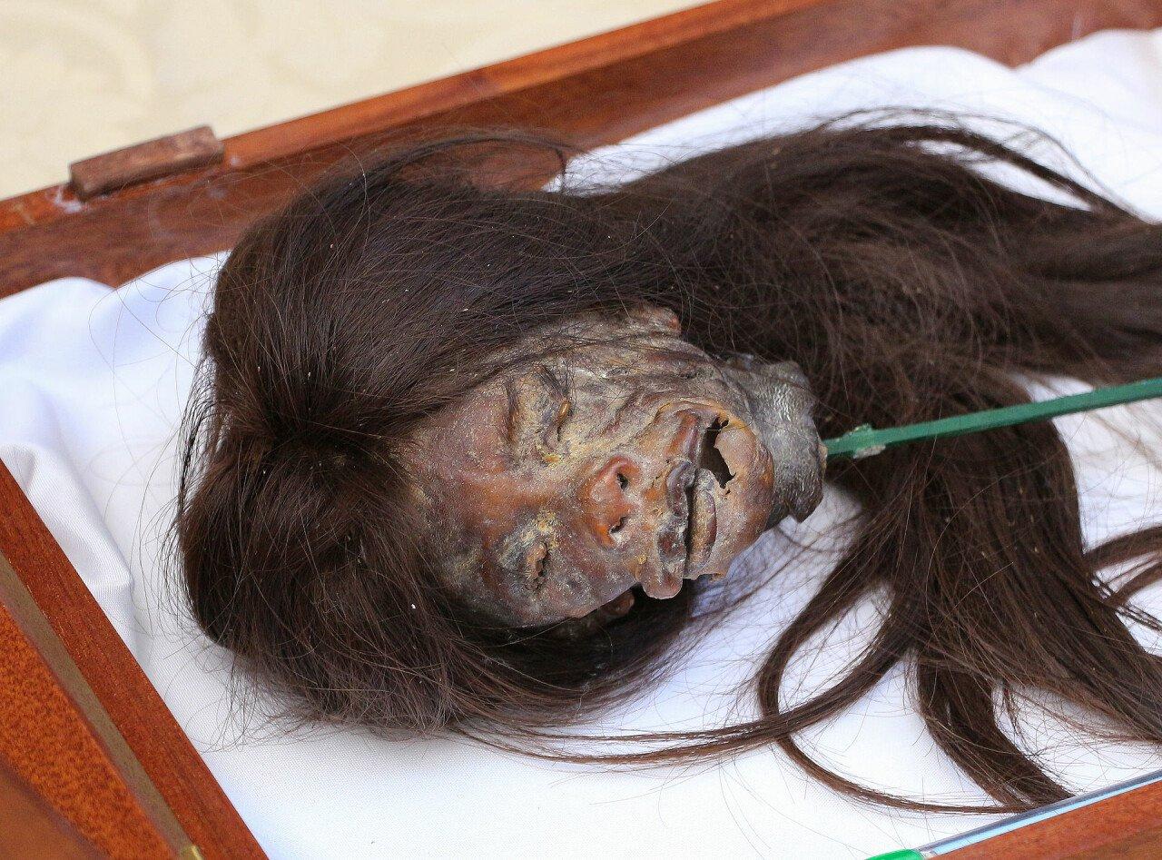 Shrunken_head_Cuenca_Ecuador-Bernard-Gagnon-wikimedia.jpg 약혐) 시체의 머리를 방부처리해서 기념품으로 보관하는 풍습.jpg
