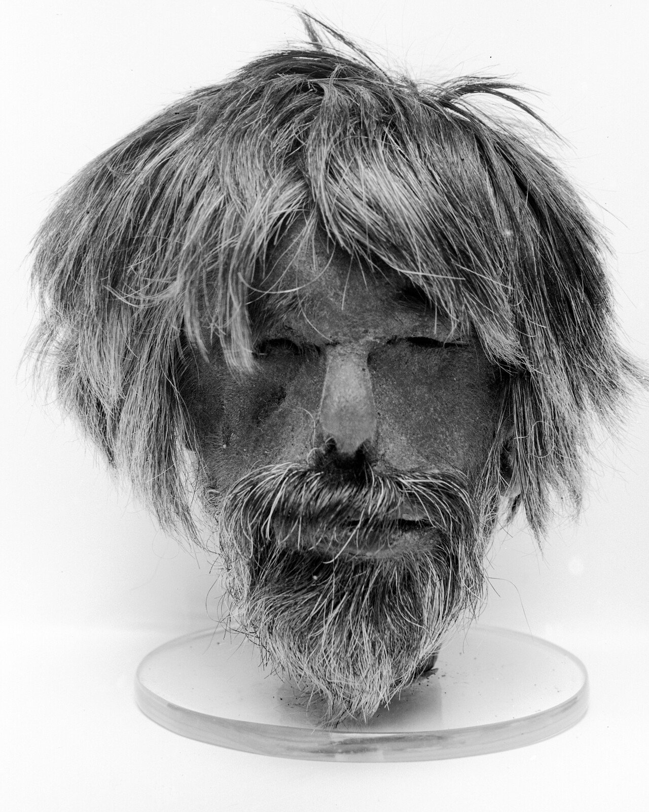 A_shrunken_head_Wellcome_M0000158.jpg 약혐) 시체의 머리를 방부처리해서 기념품으로 보관하는 풍습.jpg