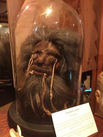 the-shrunken-head.jpg 약혐) 시체의 머리를 방부처리해서 기념품으로 보관하는 풍습.jpg