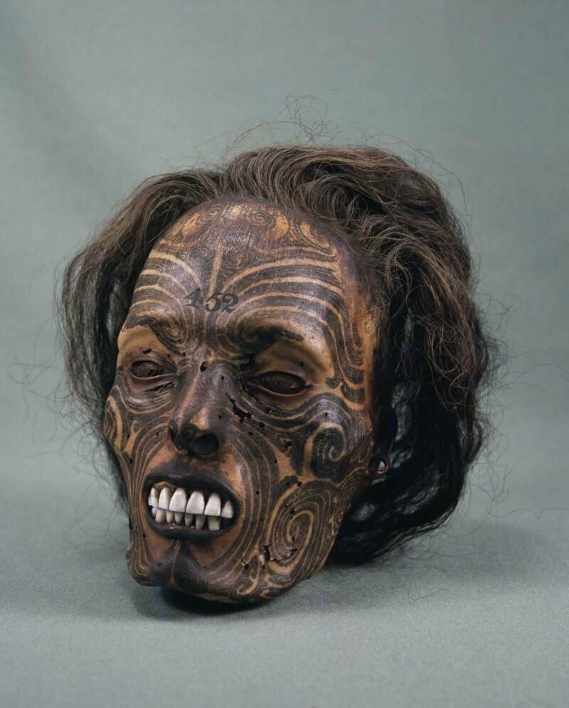 tattooed-maori.jpg 약혐) 시체의 머리를 방부처리해서 기념품으로 보관하는 풍습.jpg