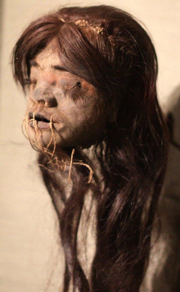 4110497093_0d0d176aea_b.jpg 약혐) 시체의 머리를 방부처리해서 기념품으로 보관하는 풍습.jpg