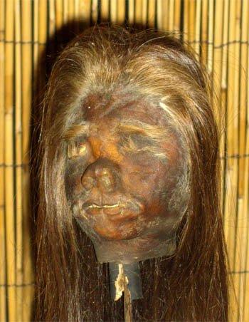 shrunkenheadldk.jpg 약혐) 시체의 머리를 방부처리해서 기념품으로 보관하는 풍습.jpg