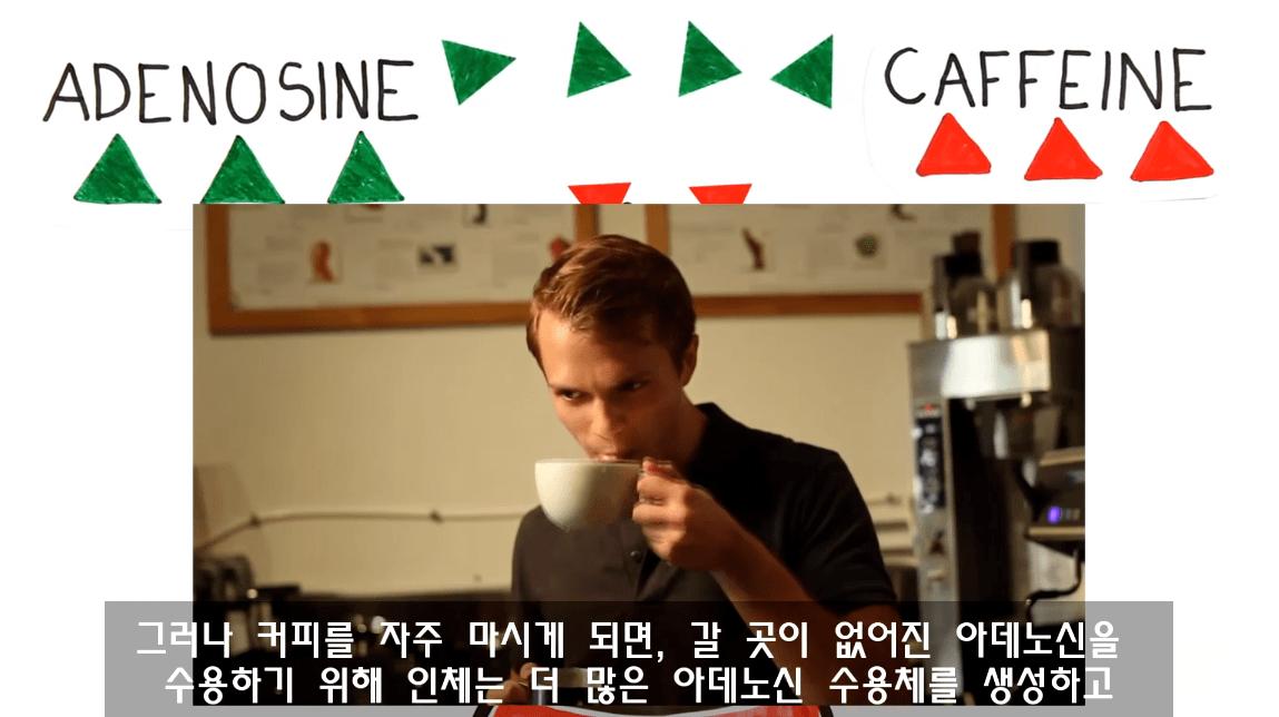 캡처_2019_03_29_11_28_01_236.png 낮잠잘때 커피를 마시면 좋은 이유. 커피냅(CoffeeNap)