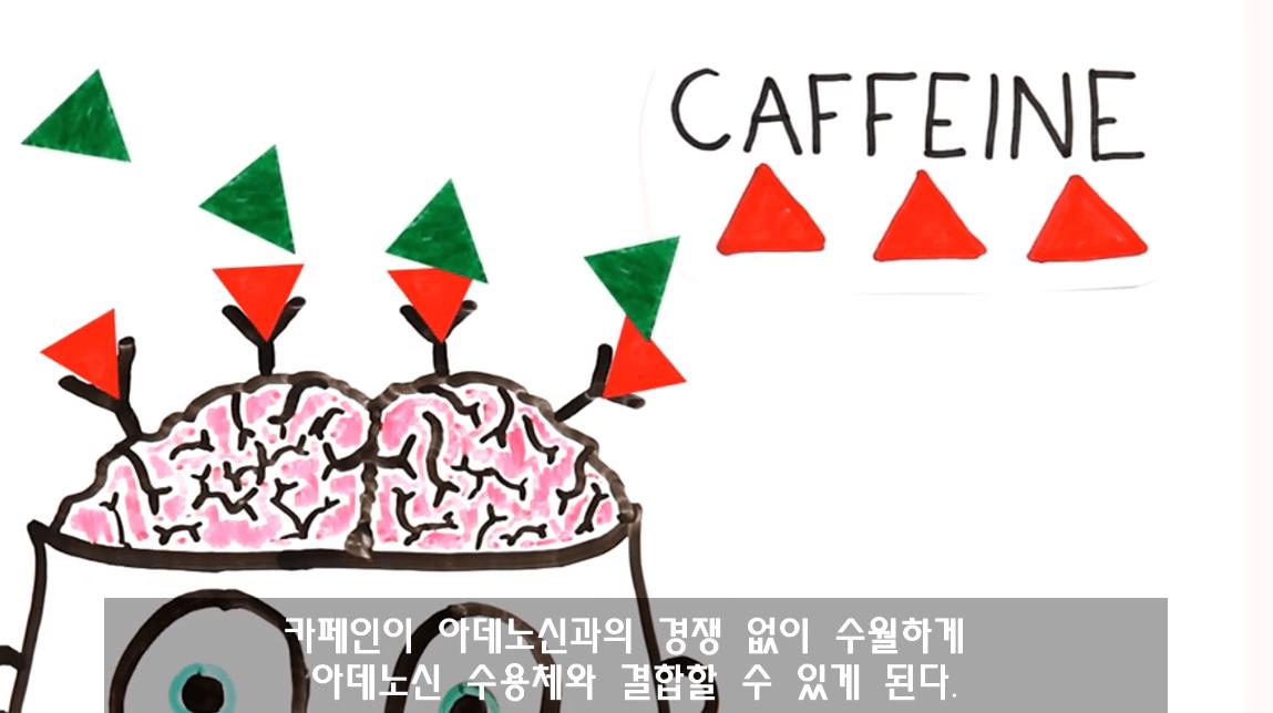 캡처_2019_03_29_11_28_55_952.png 낮잠잘때 커피를 마시면 좋은 이유. 커피냅(CoffeeNap)