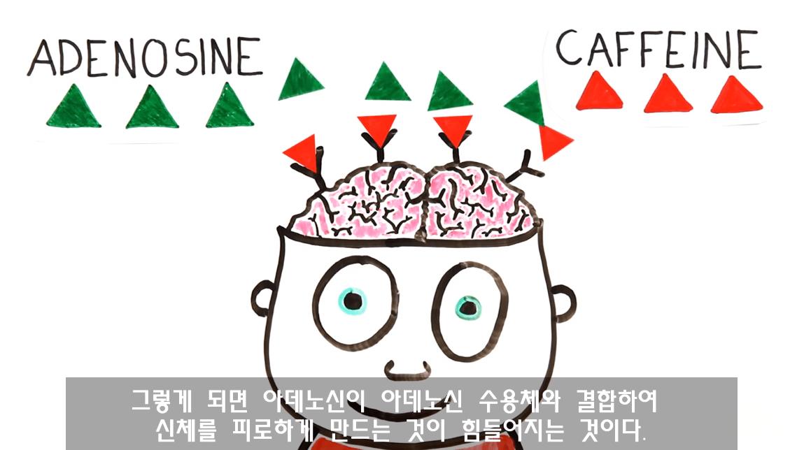 캡처_2019_03_29_11_27_55_205.png 낮잠잘때 커피를 마시면 좋은 이유. 커피냅(CoffeeNap)