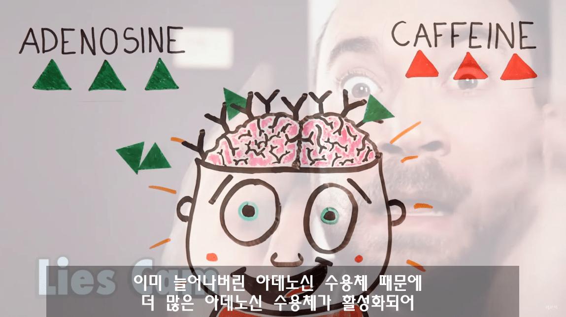 캡처_2019_03_29_11_28_19_335.png 낮잠잘때 커피를 마시면 좋은 이유. 커피냅(CoffeeNap)