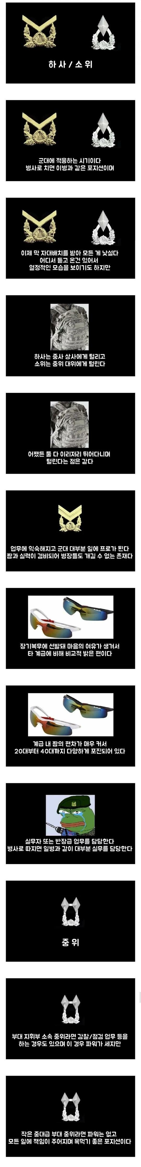 군대 간부/장교 계급별 특징