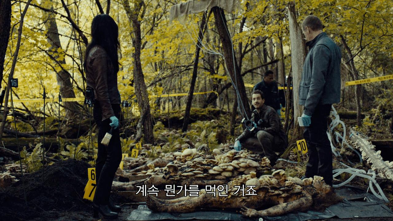 61.png 약혐] 사람 시체로 버섯 배양 가능임?