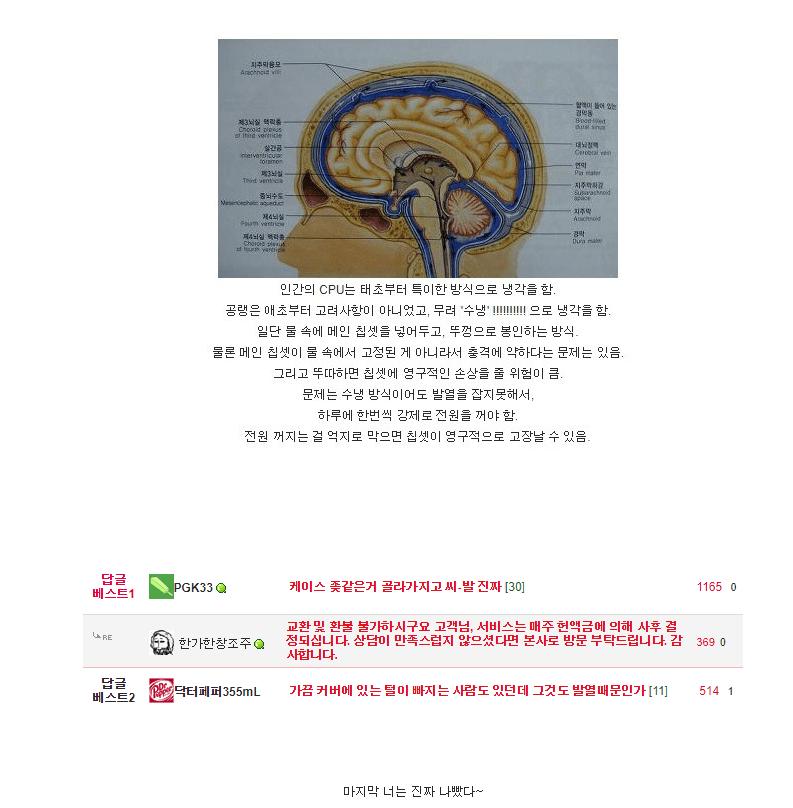 [유머] 우리의 뇌는 수냉 방식입니다 -  와이드섬