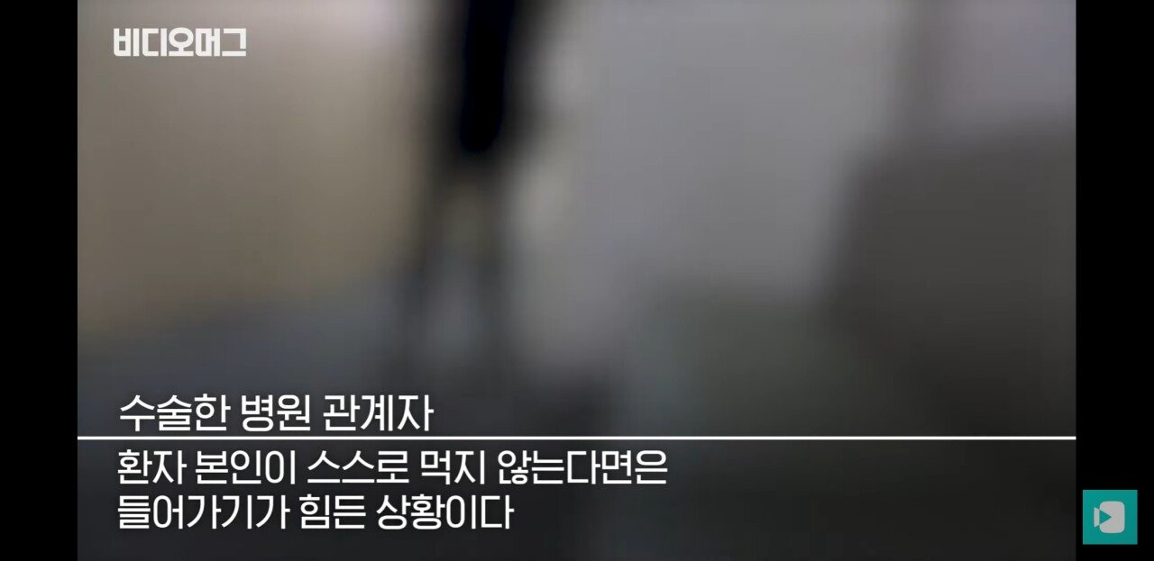 Screenshot_20190814-212341_YouTube.jpg 맹장 수술 후 뱃속에서 나온것