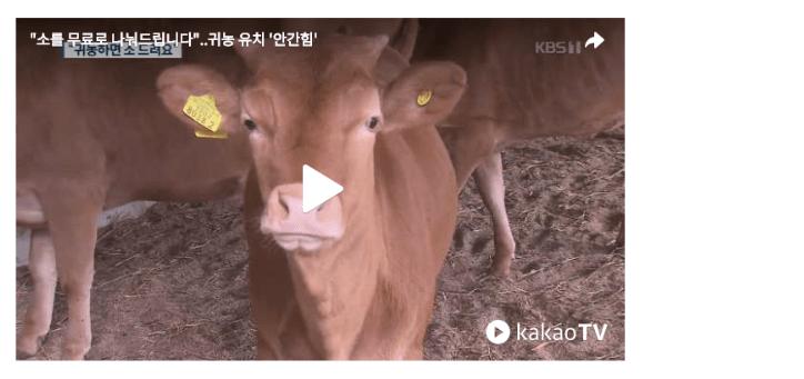 소를 무료로 나눠드립니다