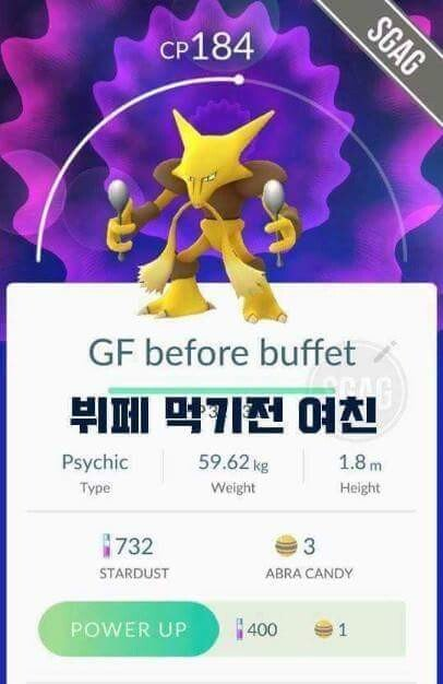 13.jpg 포켓몬 고 작명센스甲.jpg