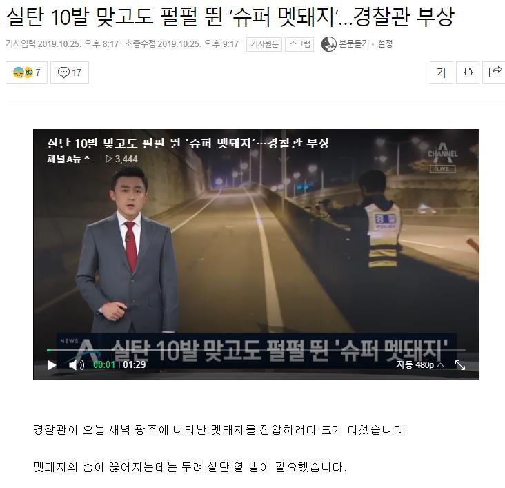 주석 2019-10-22 211452.png 실탄 10발 맞고도 펄펄 뛴 '슈퍼 멧돼지'…경찰관 부상