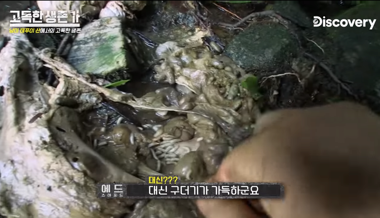 39.png ㅇㅎ/혐) 베어그릴스 뺨따구 올려치는 새로온 매운맛 베어그릴스