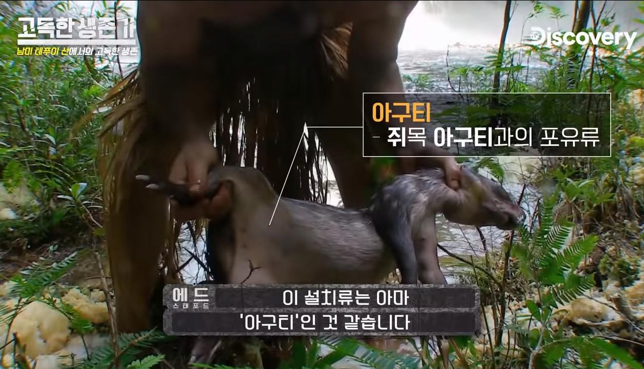 17.png ㅇㅎ/혐) 베어그릴스 뺨따구 올려치는 새로온 매운맛 베어그릴스