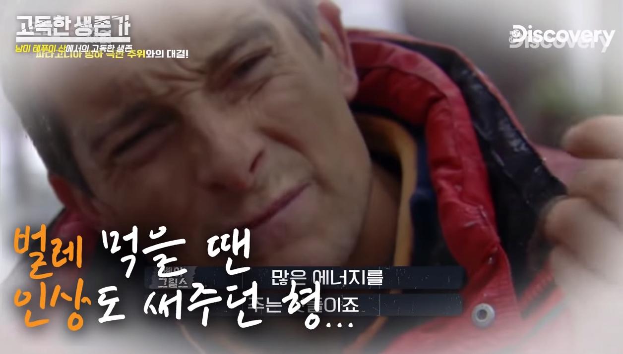 48].png ㅇㅎ/혐) 베어그릴스 뺨따구 올려치는 새로온 매운맛 베어그릴스