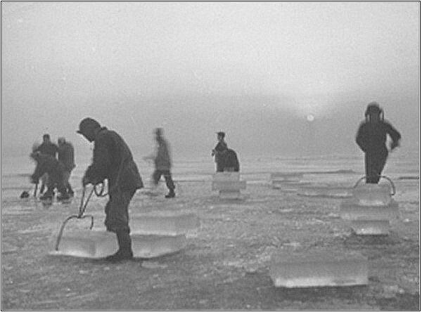 772DA1F2-08A9-441A-A862-514B6DE39310.jpeg 옛날 한강에서 얼음 채취 하는 모습 jpg.
