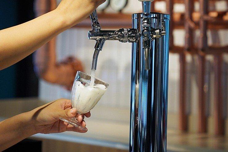 백종원 새로운 술집 프랜차이즈.jpg