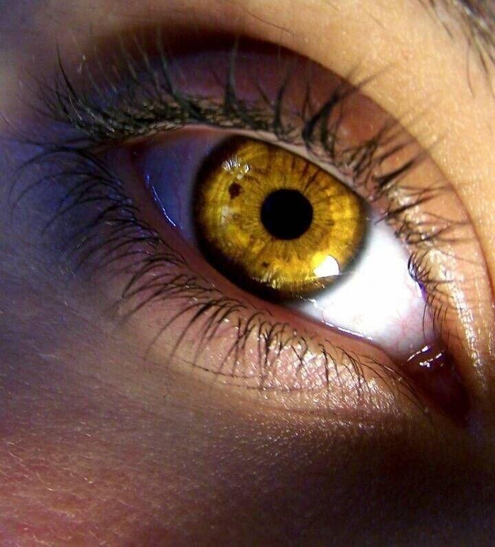 20200522154648_3a659fc392b208ef9990f15ae351ff5c_huo8.jpg 전세계 0.1%확률의 황금 눈동자녀