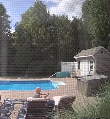 수영장 물로 목을 축인 후, 낮잠 자는 집 주인을 살짝 흔들어 깨우는 곰