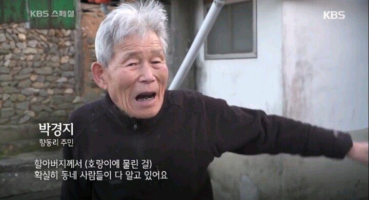05.jpeg 조선시대 의외로 호랑이 피해가 컸던 지역.jpg