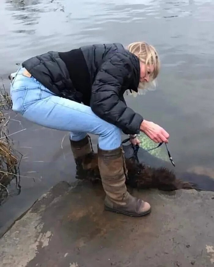 a3w62ne_700bwp.webp.ren.jpg 바위를 개한테 묶어서 강에 던진 사건