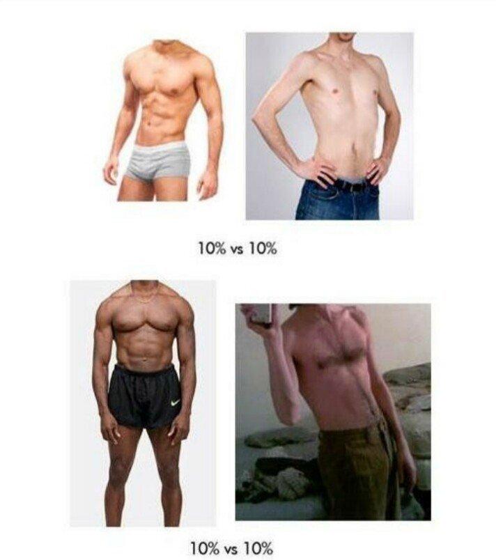 같은 체지방 다른몸매