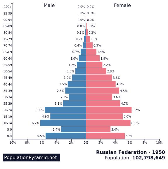 전세계 가장 비정상적인 인구피라미드 TOP3