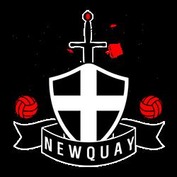 newquay logo.png 생성구단 뉴키 레블스 FC+콘월국가 독립 로스터
