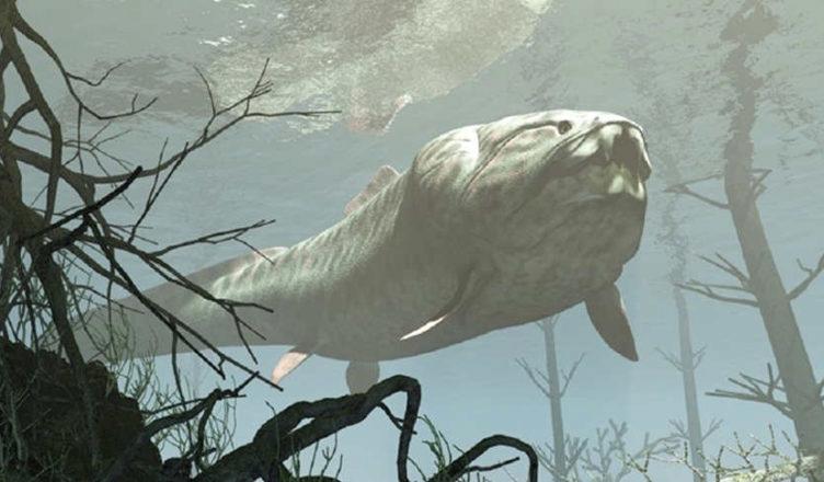 image.png 3억 8천만 년 전의 간지 원탑 물고기...jpg