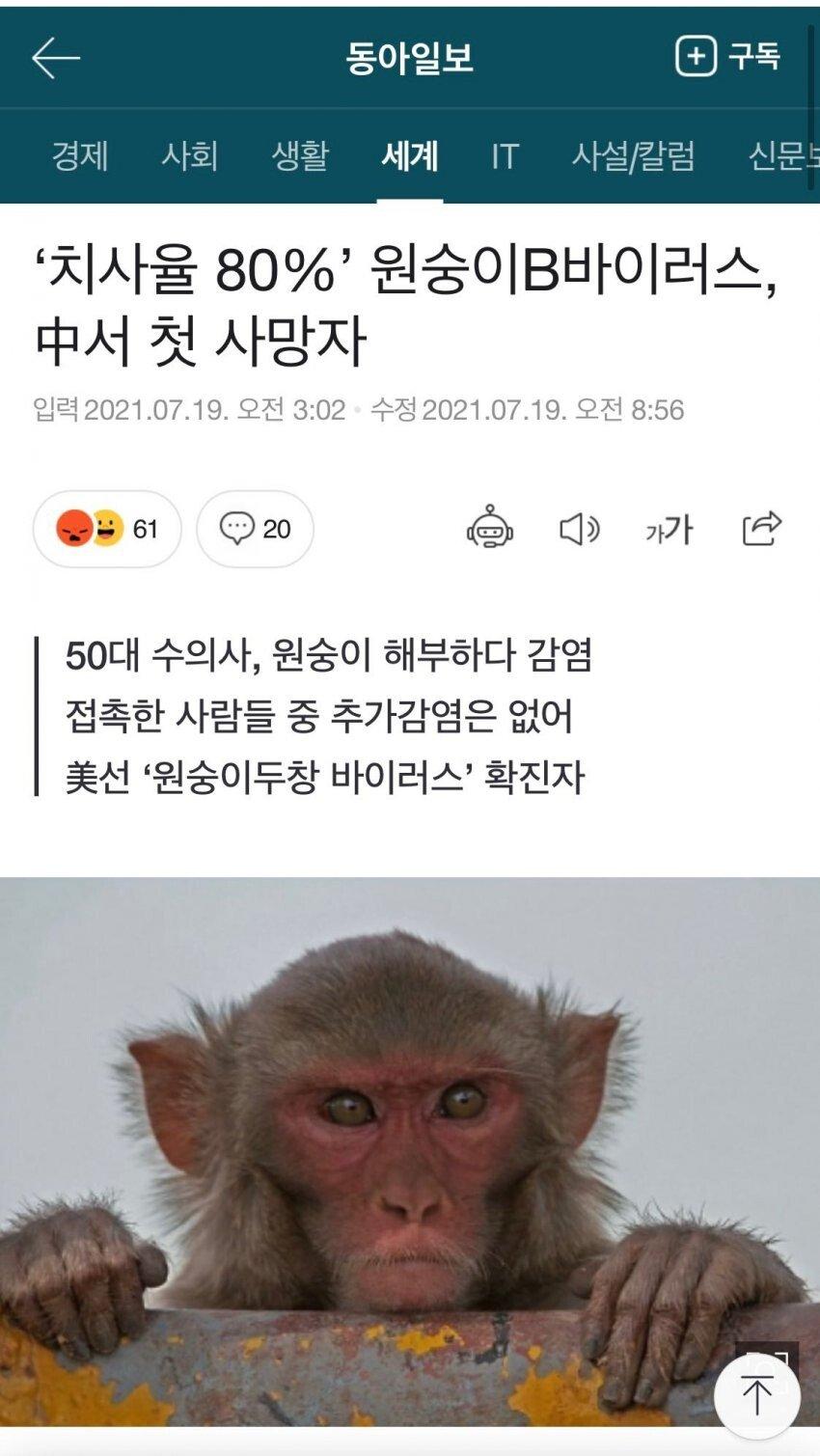 6aeff1b71f61d96b8913f9196d71077e.jpg 참깨국에서 원숭이 바이러스 발생